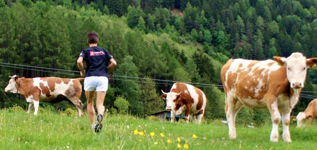 Berglauftraining im Ahrntal Südtirol