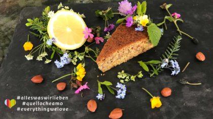 low carb Rezept Zitronen-Nusskuchen
